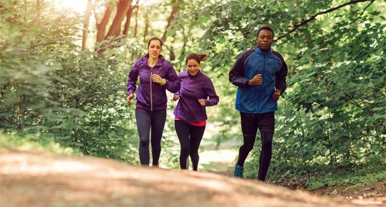 Three runners running in the forest